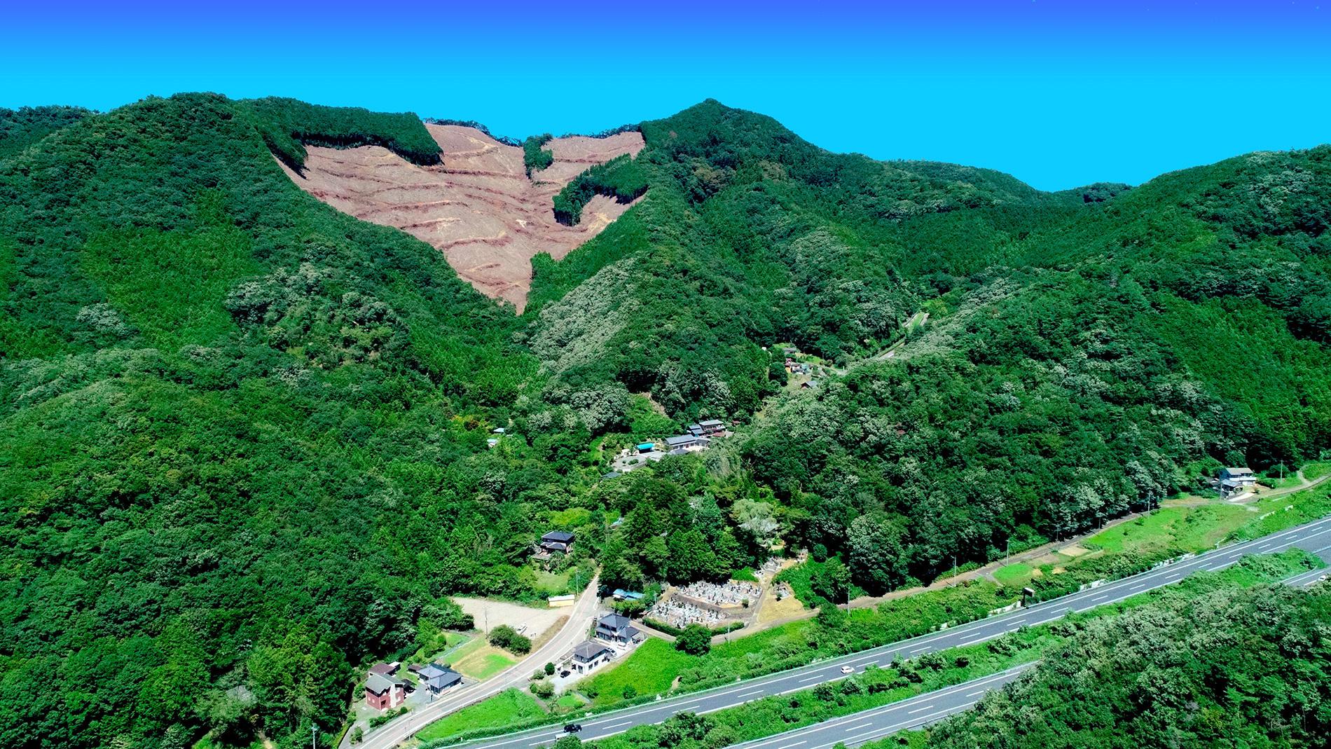 大岩山全体の写真