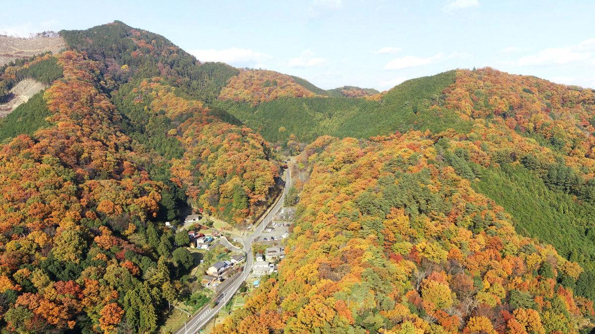 大岩山の紅葉の空撮写真