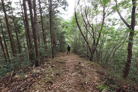 大岩山 のハイキングコース