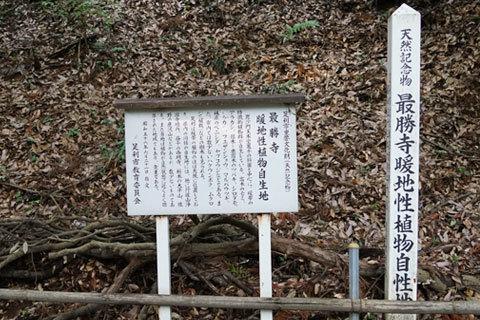 天然記念物の暖地性植物自生地の看板