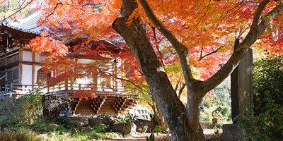 大岩山多門院最勝寺の写真