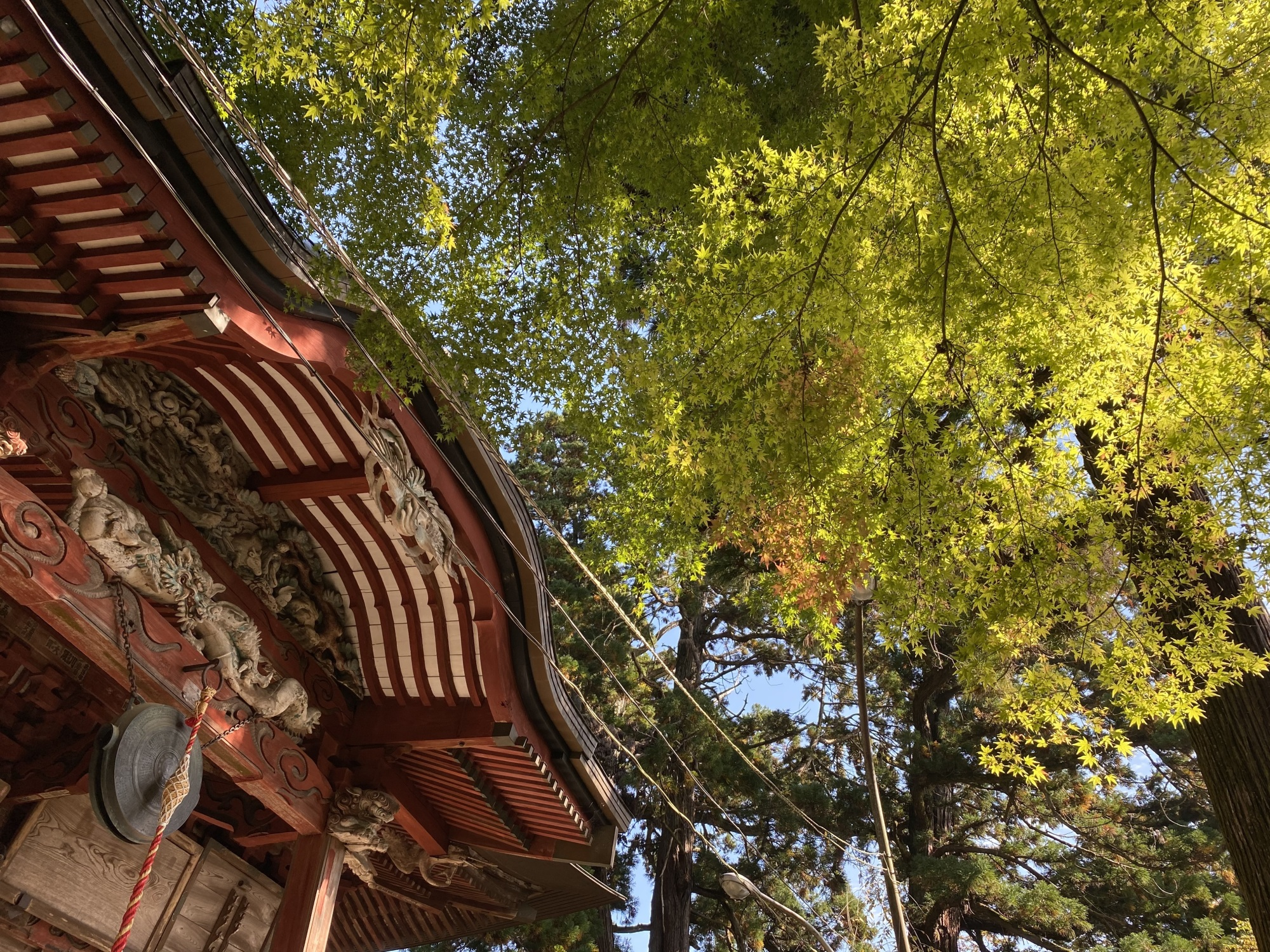大岩山毘沙門天の本堂と紅葉が始まりつつある紅葉