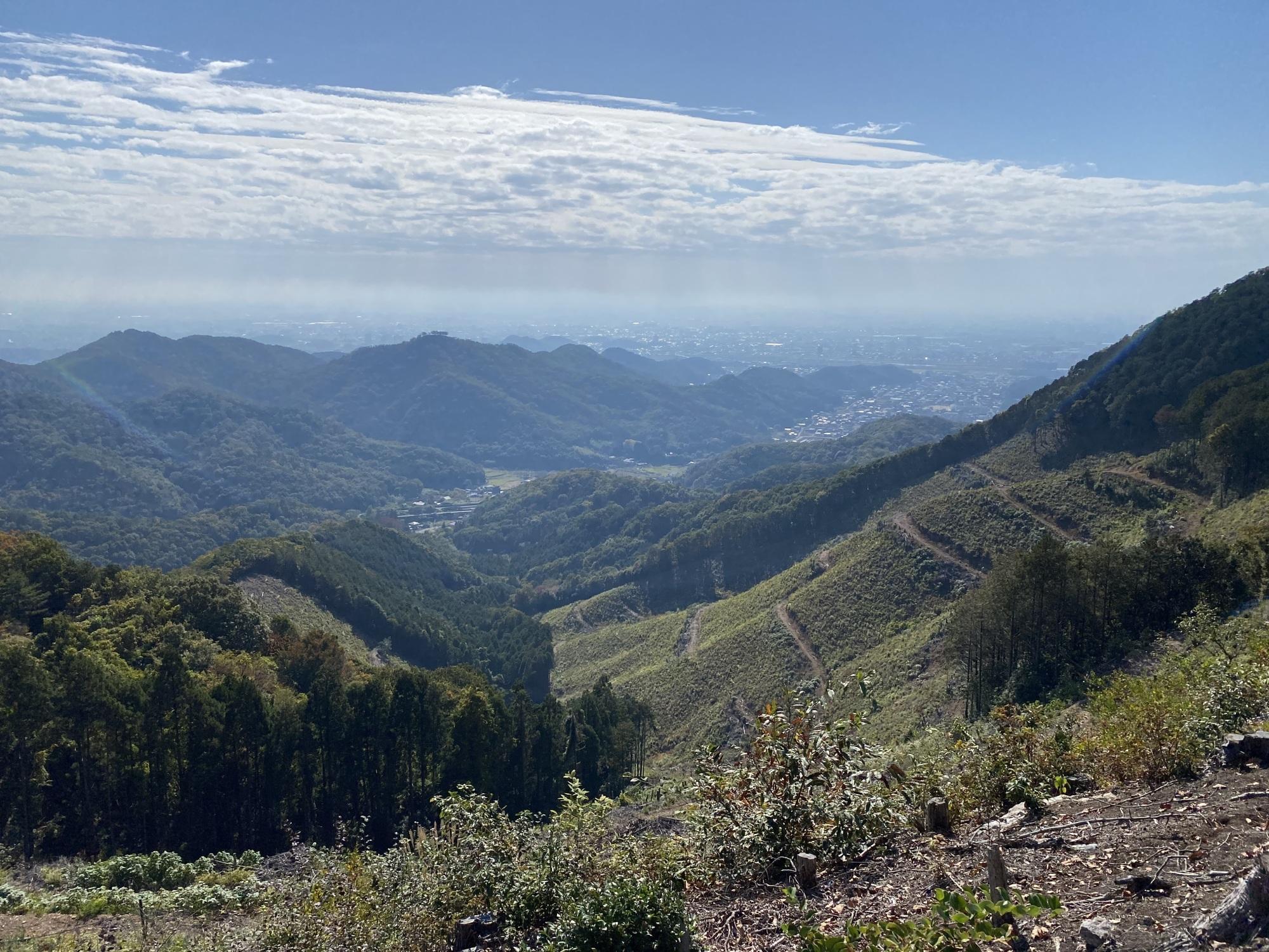 大岩山西側斜面から関東平野の眺め