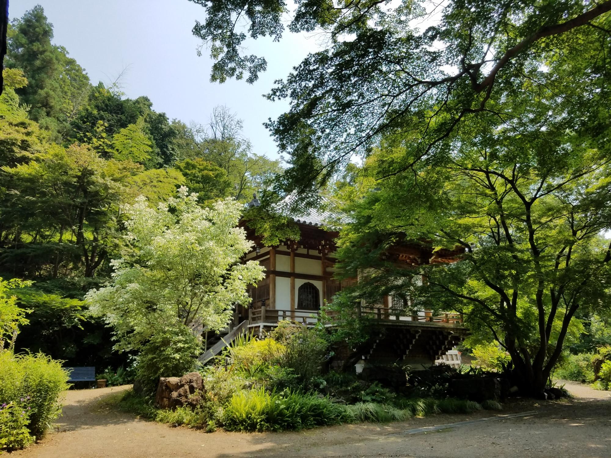 大岩山多聞院最勝寺本坊の本堂の春の写真