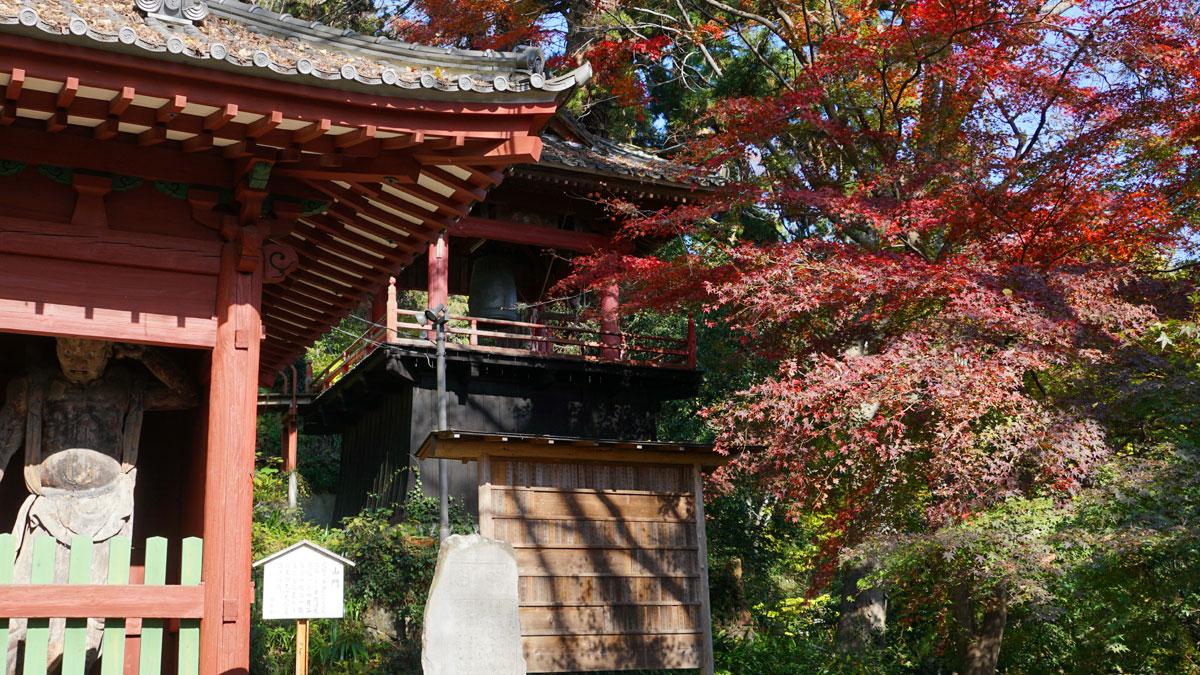 大岩山毘沙門天本堂の仁王門前の紅葉風景写真